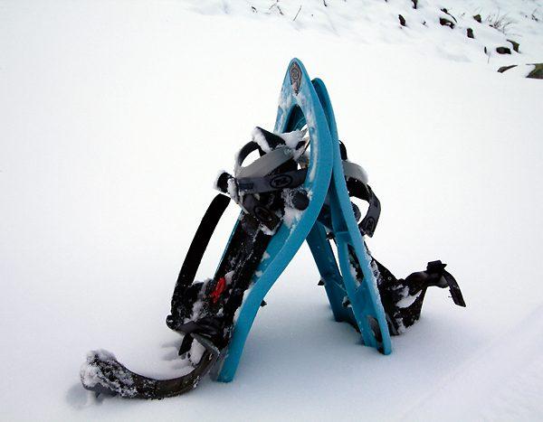 ski-technic-raquettes-neige